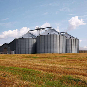 Gold Supplier 500/1000/10000 Tons Paddy Rice Grain Storage Silo For Farm